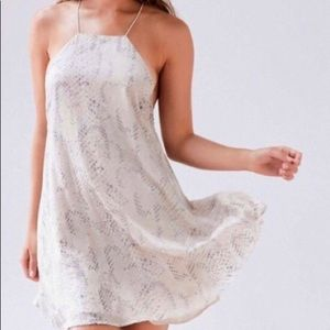 Viper Burnout Chiffon Mini Dress